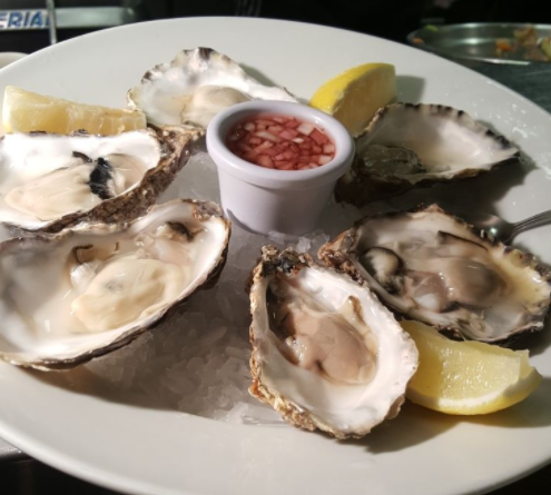 cold water oysters at the brass monkey seafood restaurant, Howth