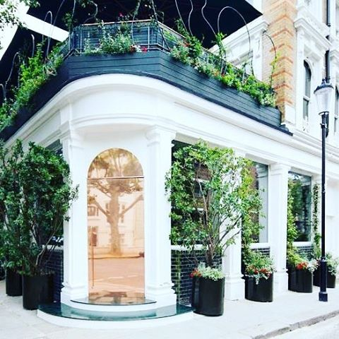 London's most beautiful front door 💕. Working with @casacruzlondon was so much fun. Highest possible quality of ingredients, cooked to perfection, unlocking unbeatable flavours. This beautiful restaurant is a total gem 👍⭐️✔️ #MCrecommends #MCinLondon
