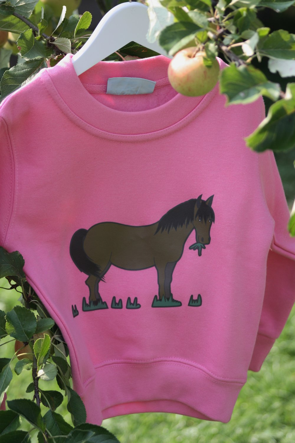 Pink brown pony.jpg