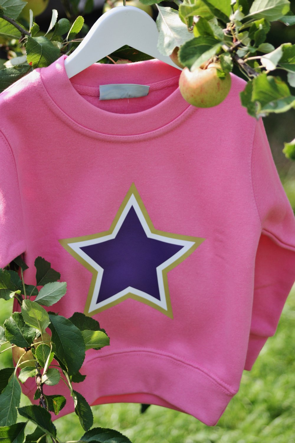 Pink purple star.jpg