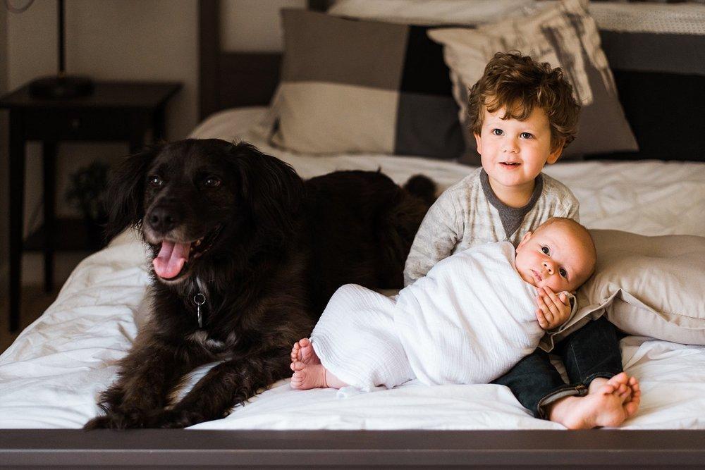 toddler newborn baby and dog on bed