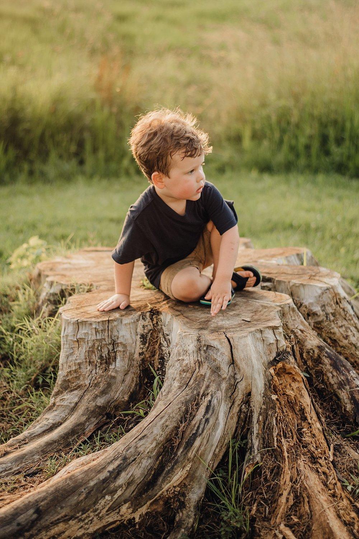 toddler boy on tree stump Lake Acworth Cauble Park