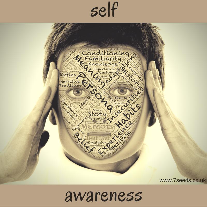 7seeds Self Awareness.png