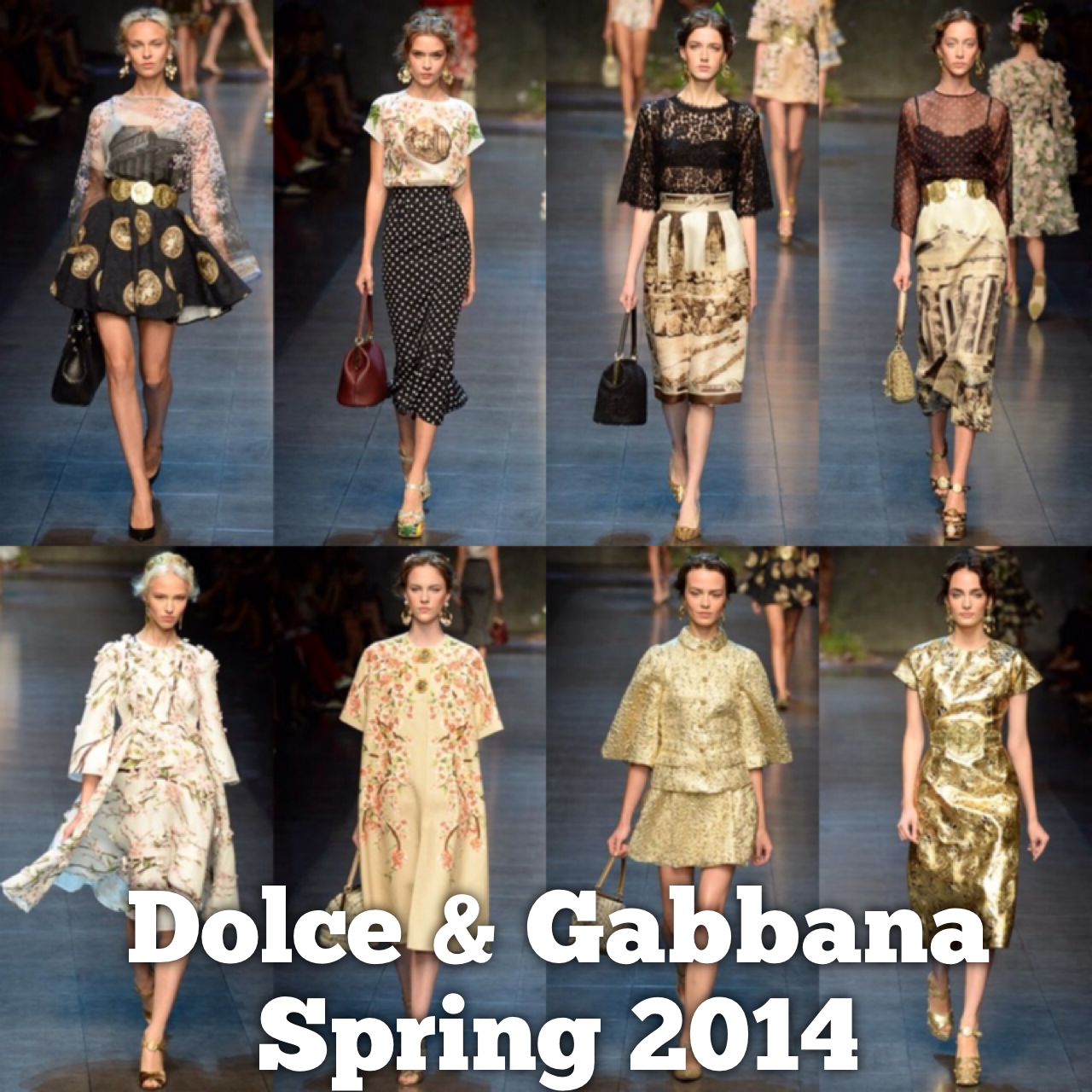 Spring 2014 Dolce and Gabbana