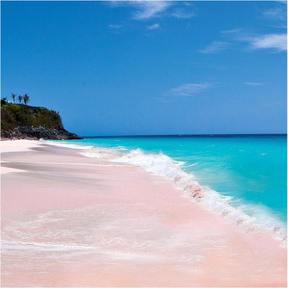 Pink sand beach Harbour Island, Bahamas