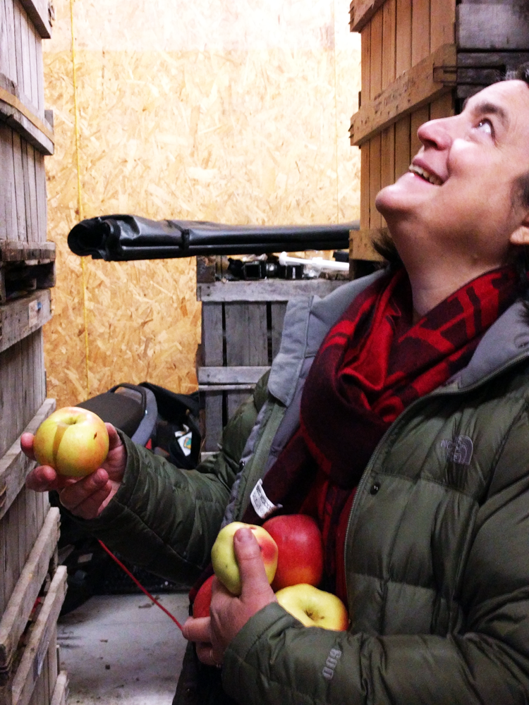 Founder and cidermaker Eleanor Léger surveys apples, soon to be pressed