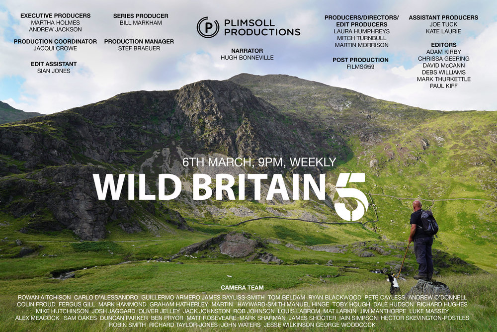 Wild Great Britain TX Card - FINAL 2.jpg