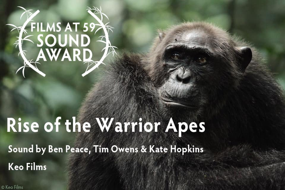 Apes Sound.jpg