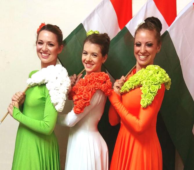 Light emitting dance indian flag divine company light emitting dance indian flag mightylinksfo