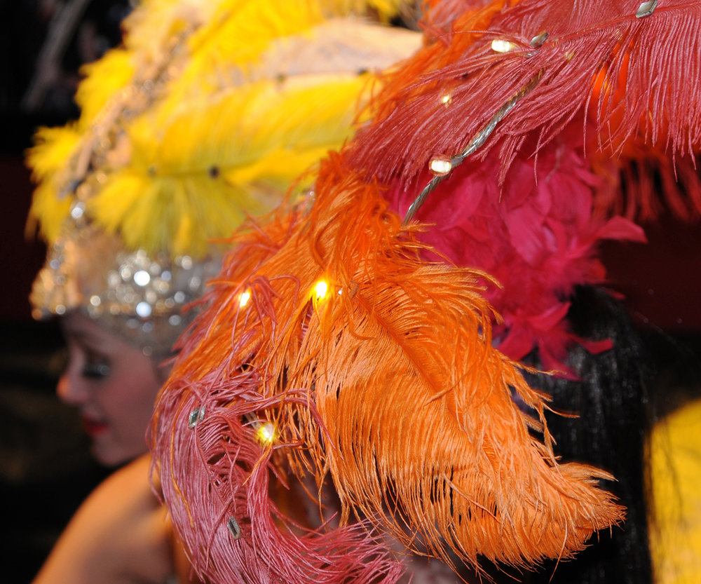 Electric Showgirls, detail 1, Divine Company.jpg