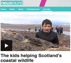 newsround.png