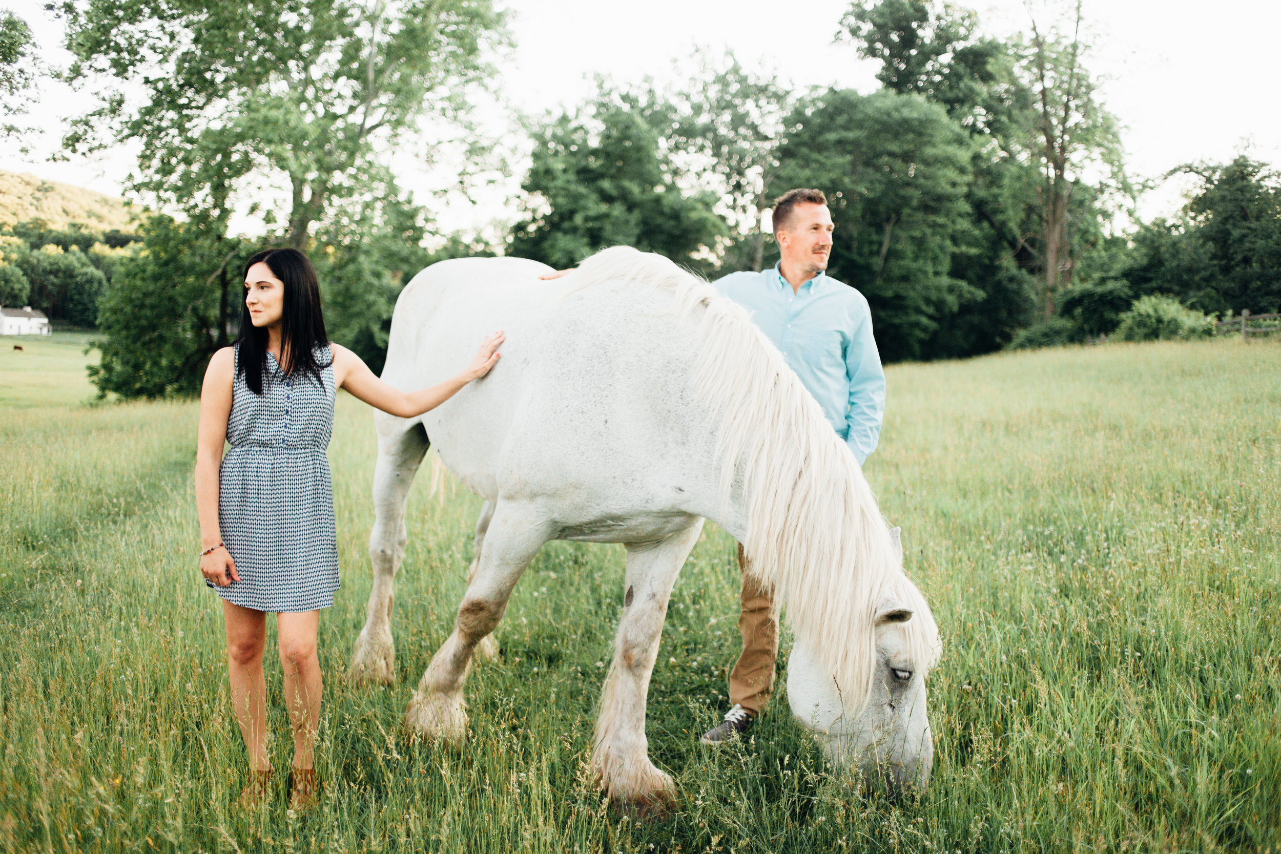 Rebekah Viola Photography  Pennsylvania French Creek state Park