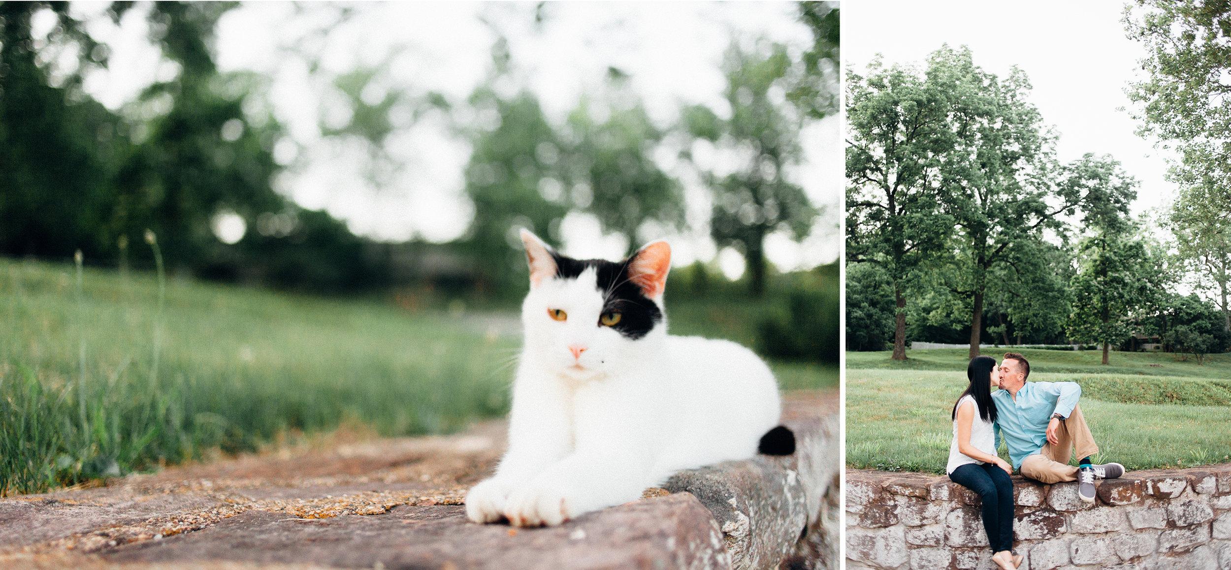 rebekahviolaphotography6