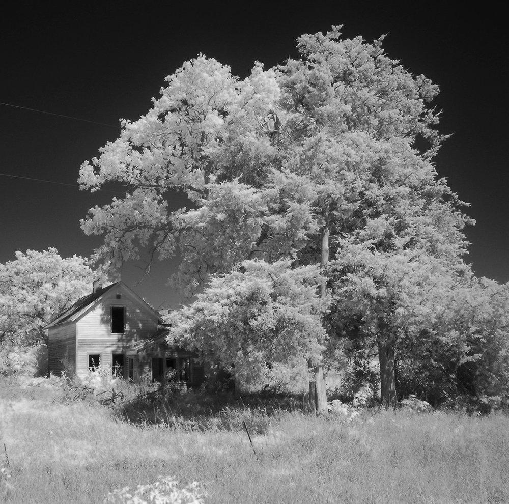 KFAI: Farm Noir