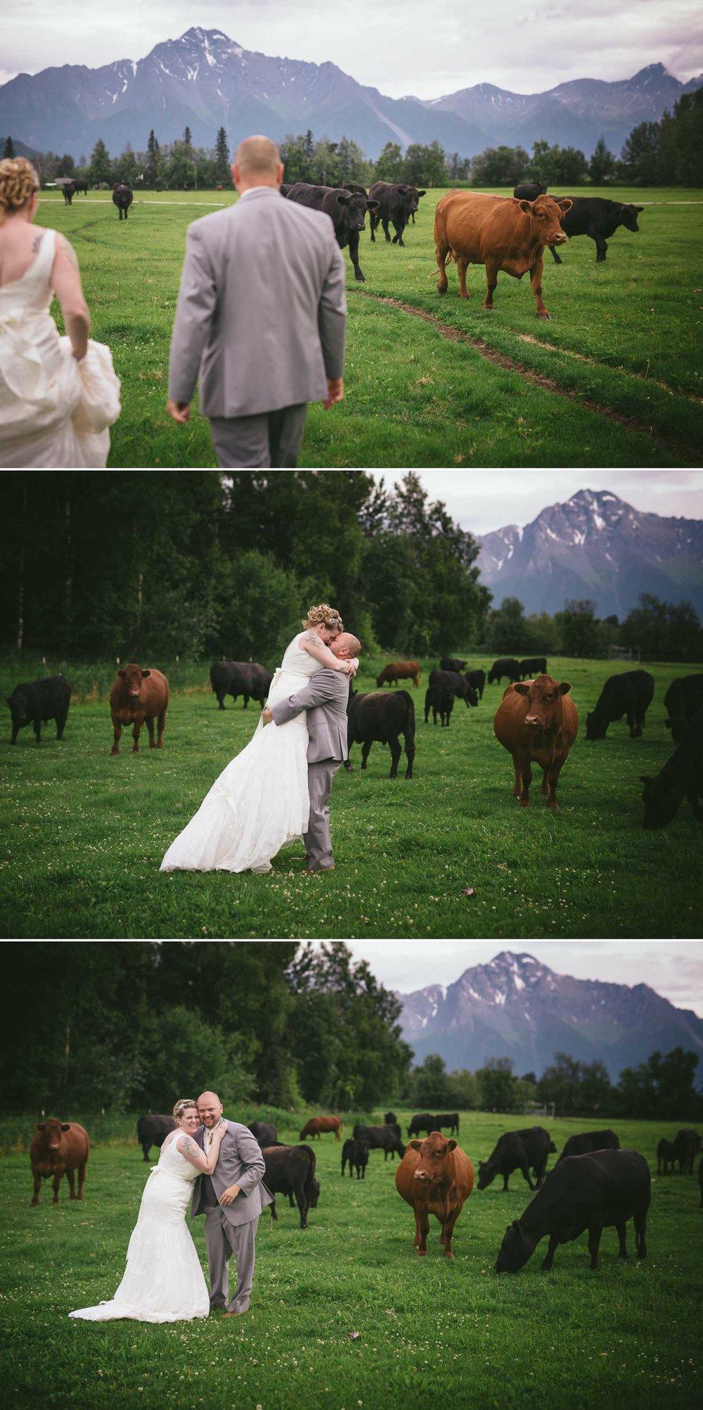 Paradise Alaska Wedding