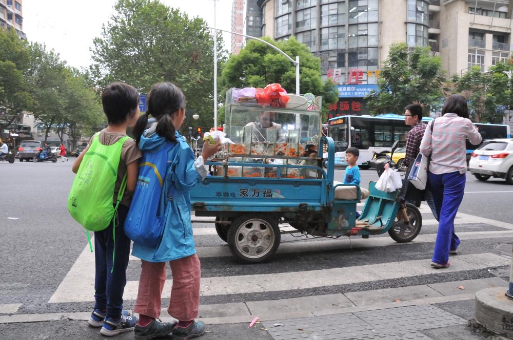 Mobile goldfish shop