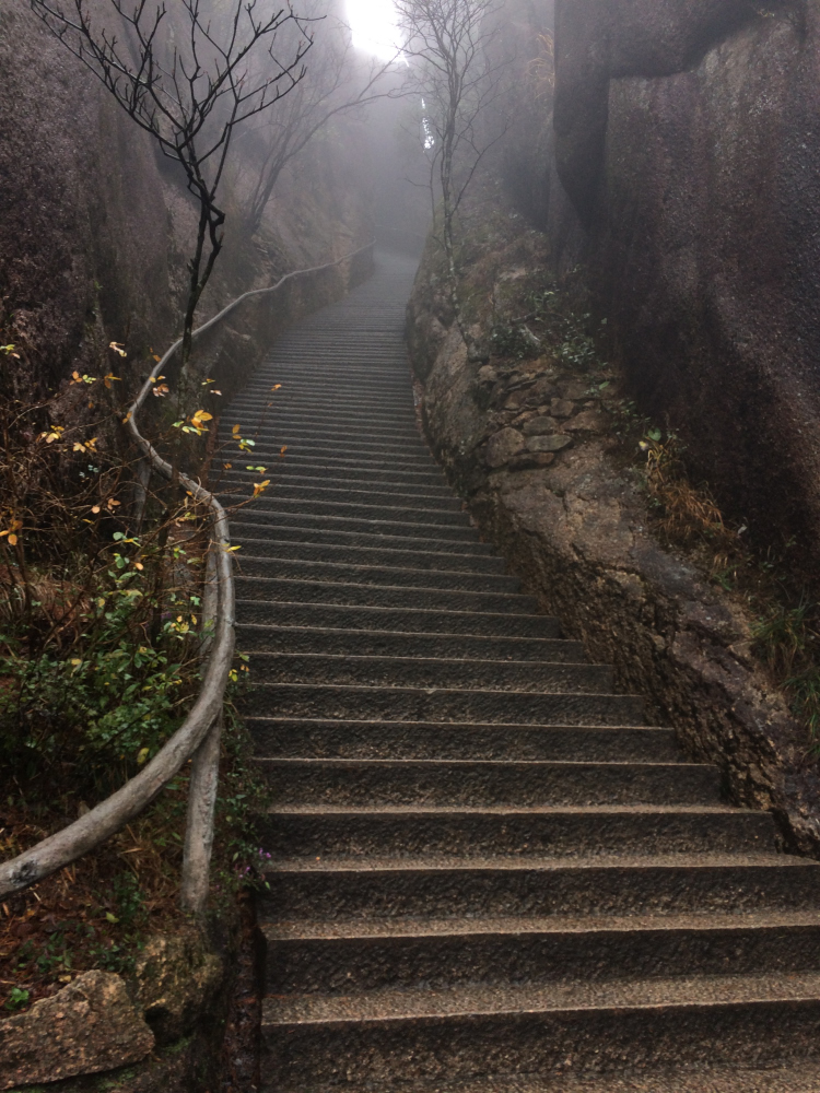 Some sections were never ending staircases, most quite steep. We were definitely wobblies near the end.