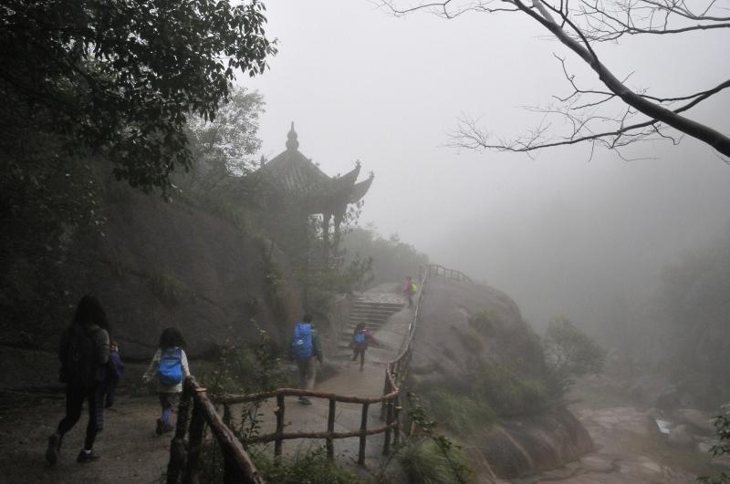 Misty Hikes