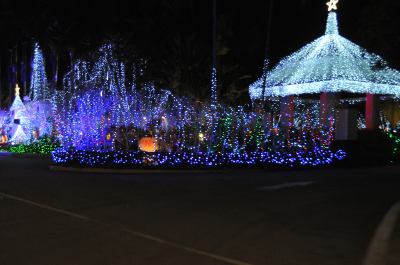 Christmas Decorations around the city