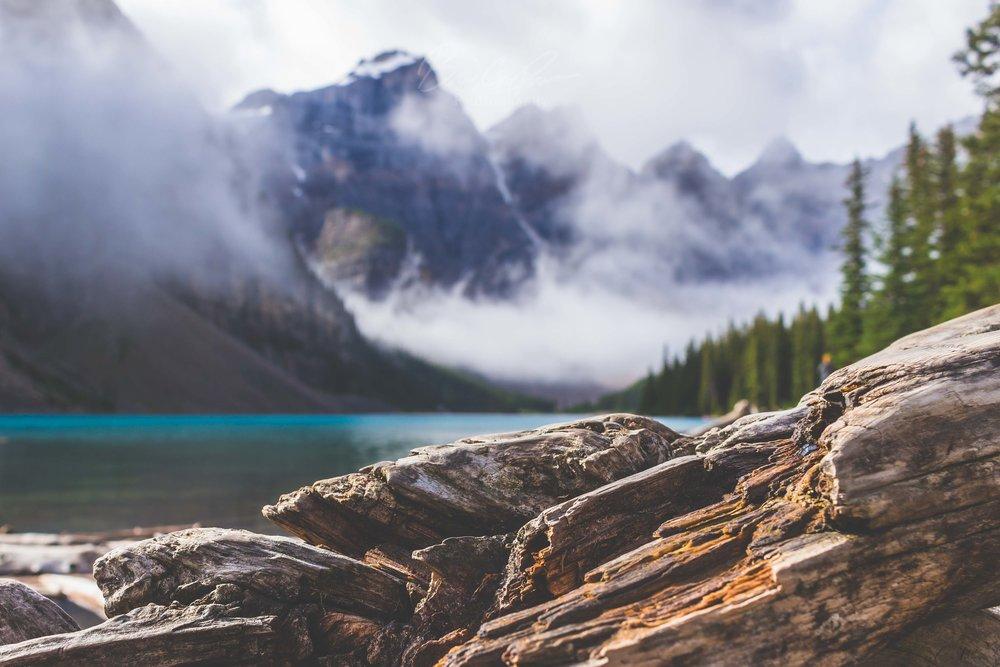 Shore of Moraine Lake, Banff National Park