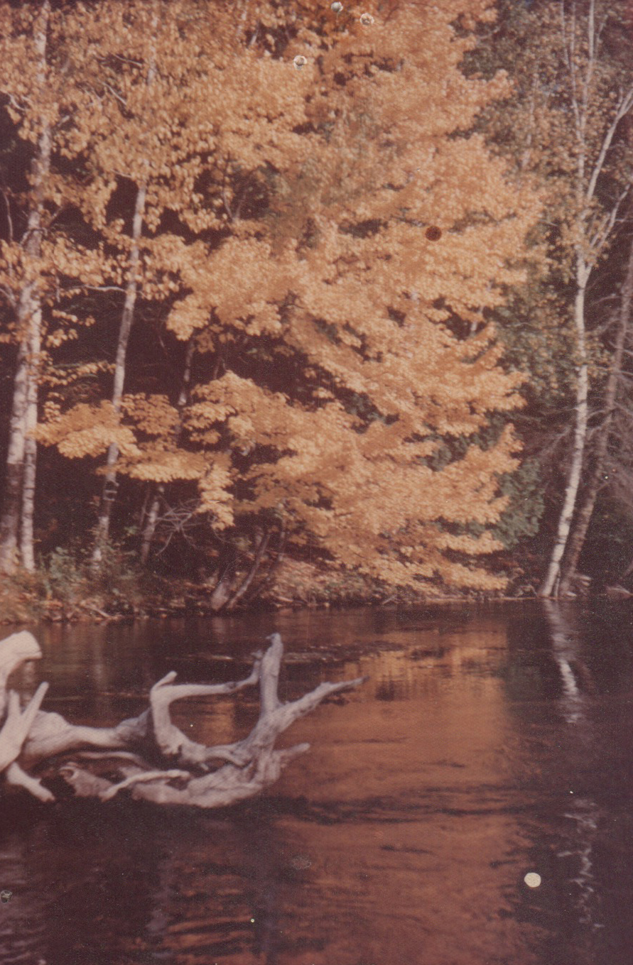Autumn river scene.jpeg