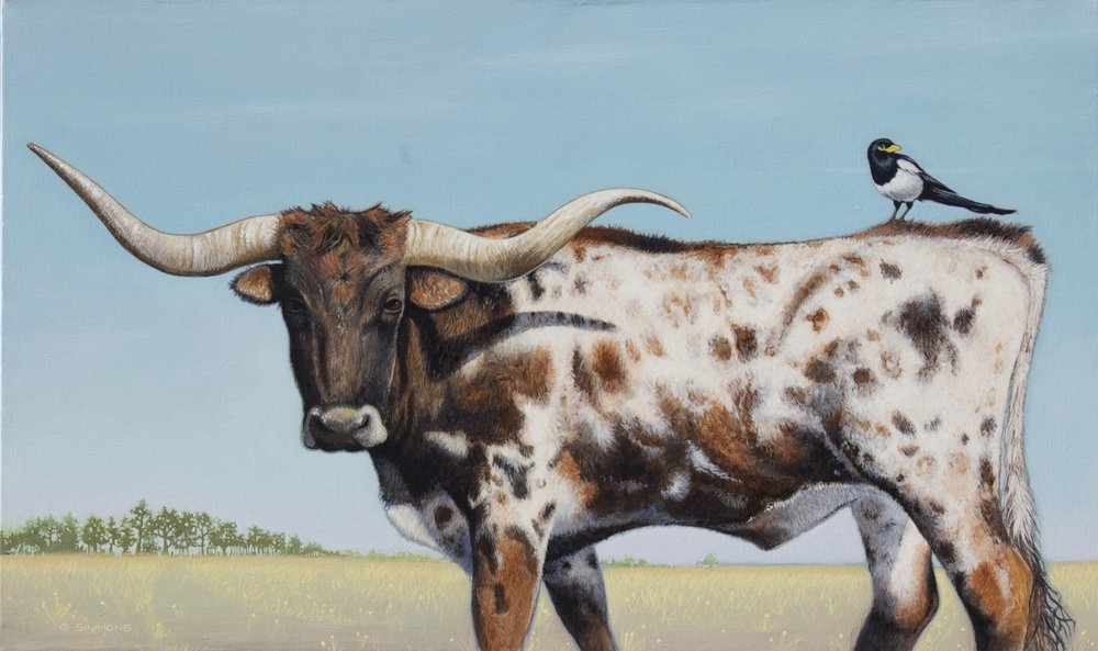 Longhorn & Magpie, Canvas, 24x40 $2850