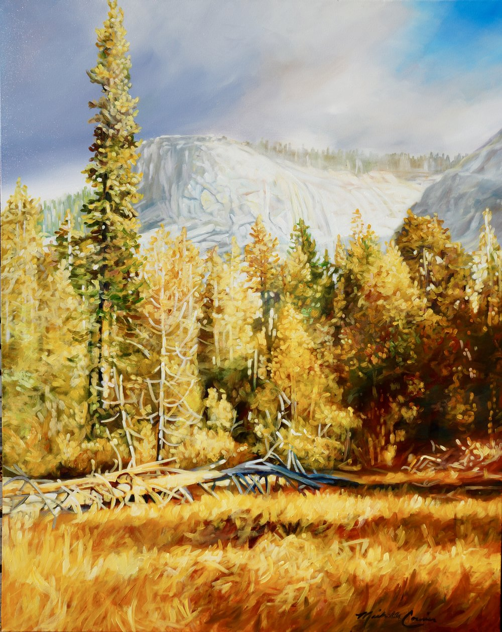 TUOLUMNE MEADOWS 48x60 inches acrylic on canvas  $9,300