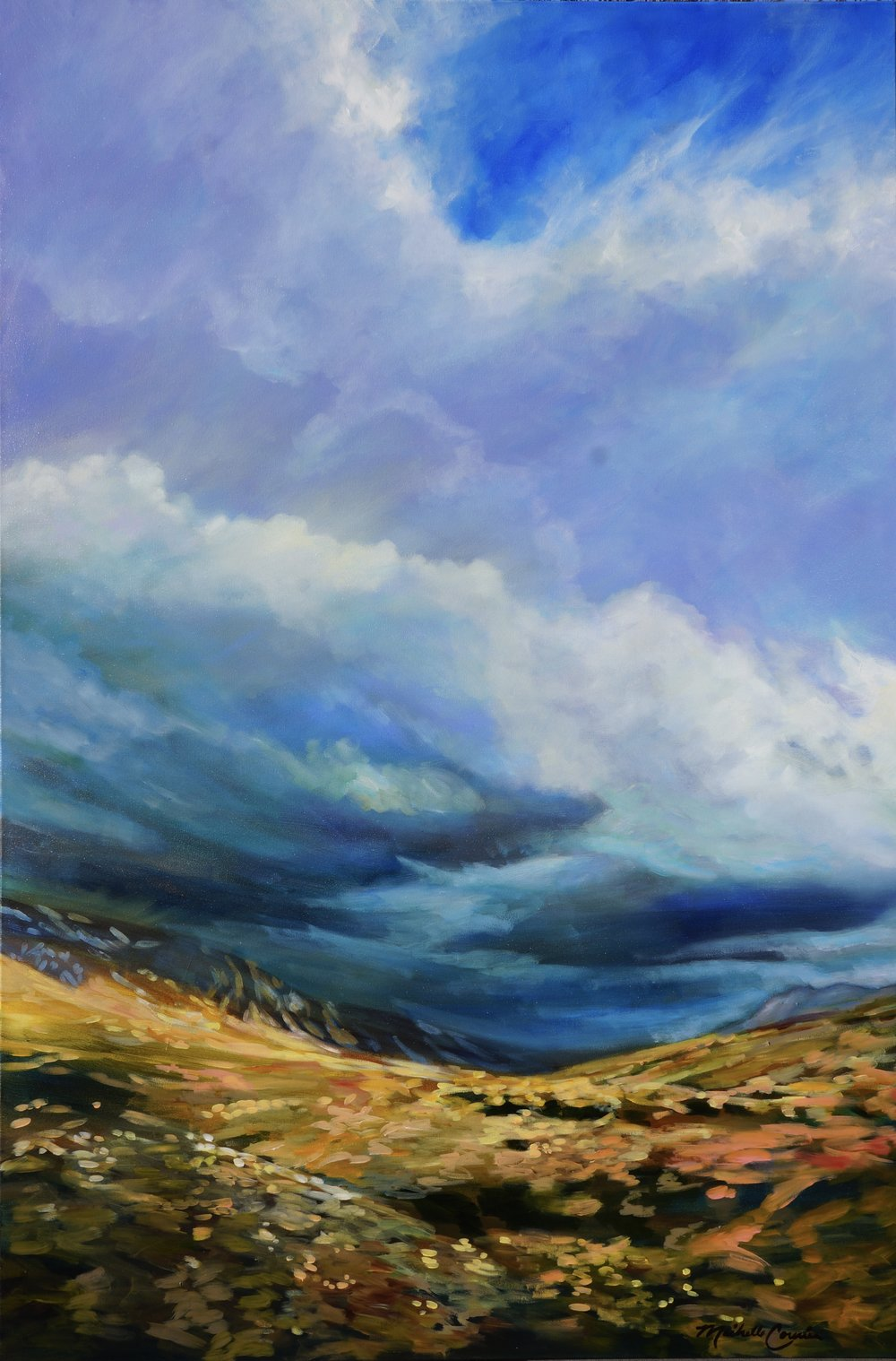 FORBIDDEN SKY 48X72 IN $10500