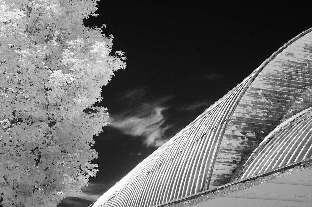 Cloud, Tree and Barn, Hamilton, New York