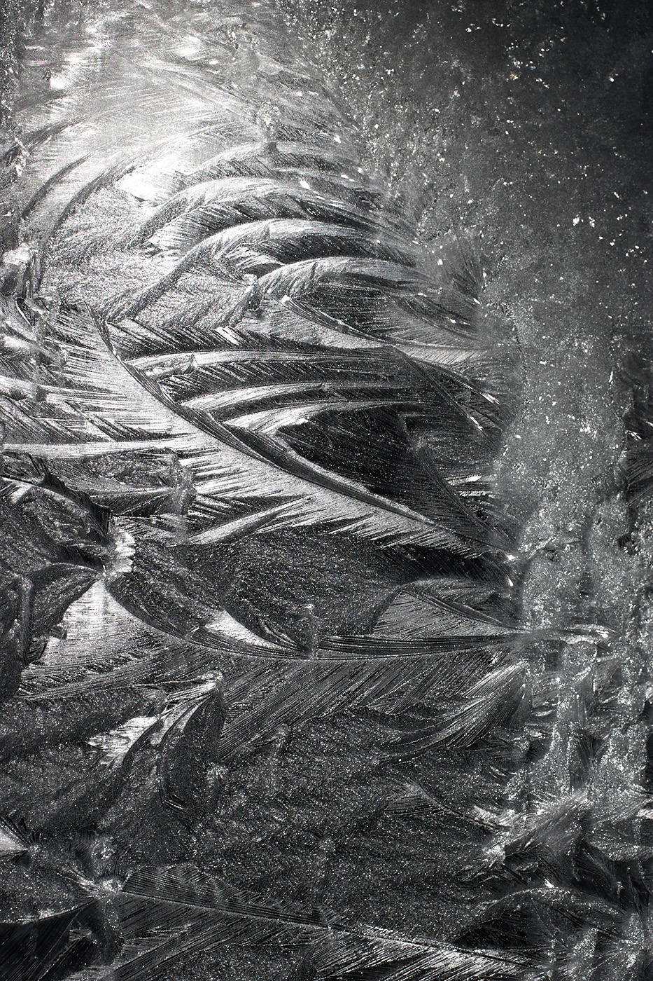 Ice Crystals on Window, Hamilton, New York