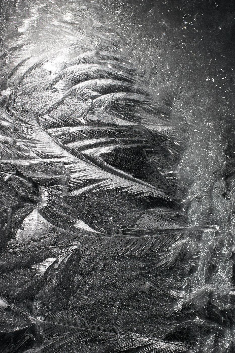 Ice Crystals on Window, Hamilton, New York