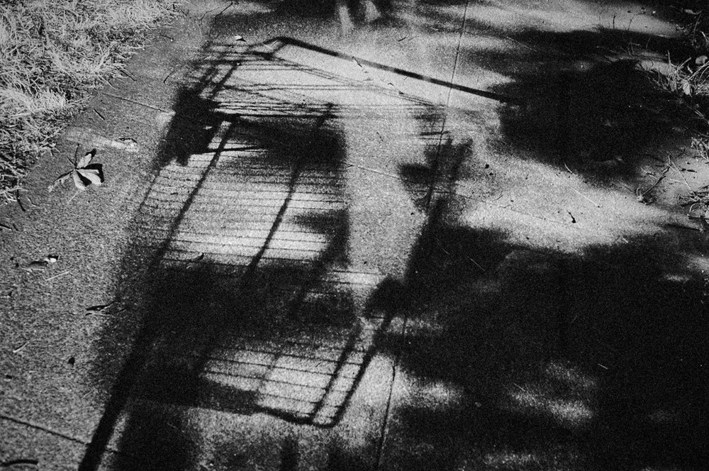 Shopping Cart Shadow, Portland, Oregon