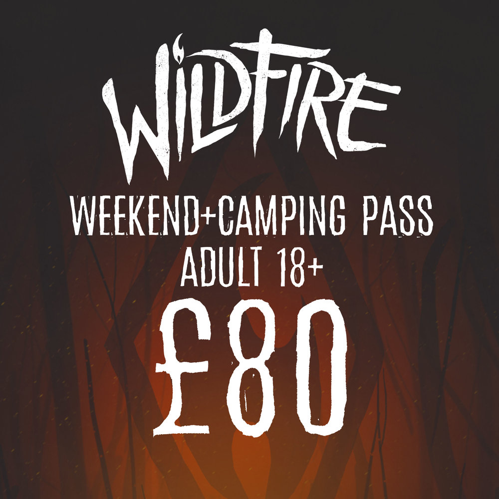 WEEKEND + CAMPING PASS (AGES 18+) £80.00