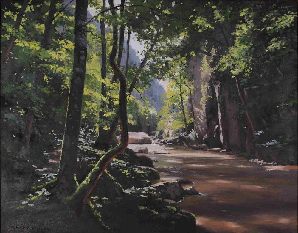 Vargyas Gorge - Transylvania : oil on canvas.JPG