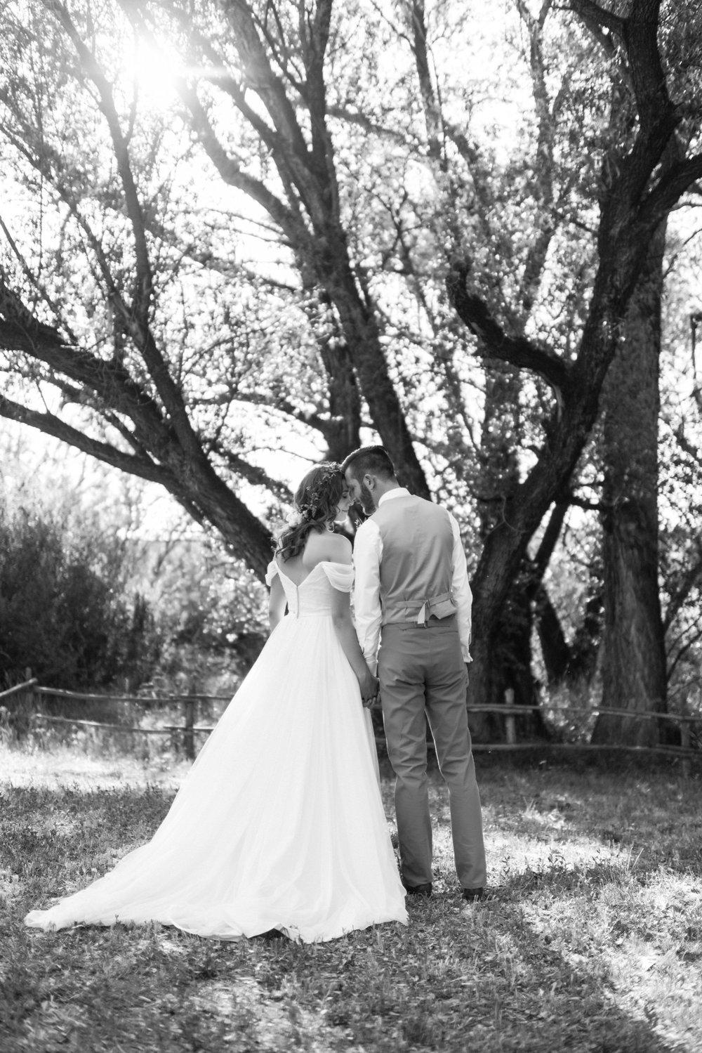 Josh&Lydia-1252.jpg