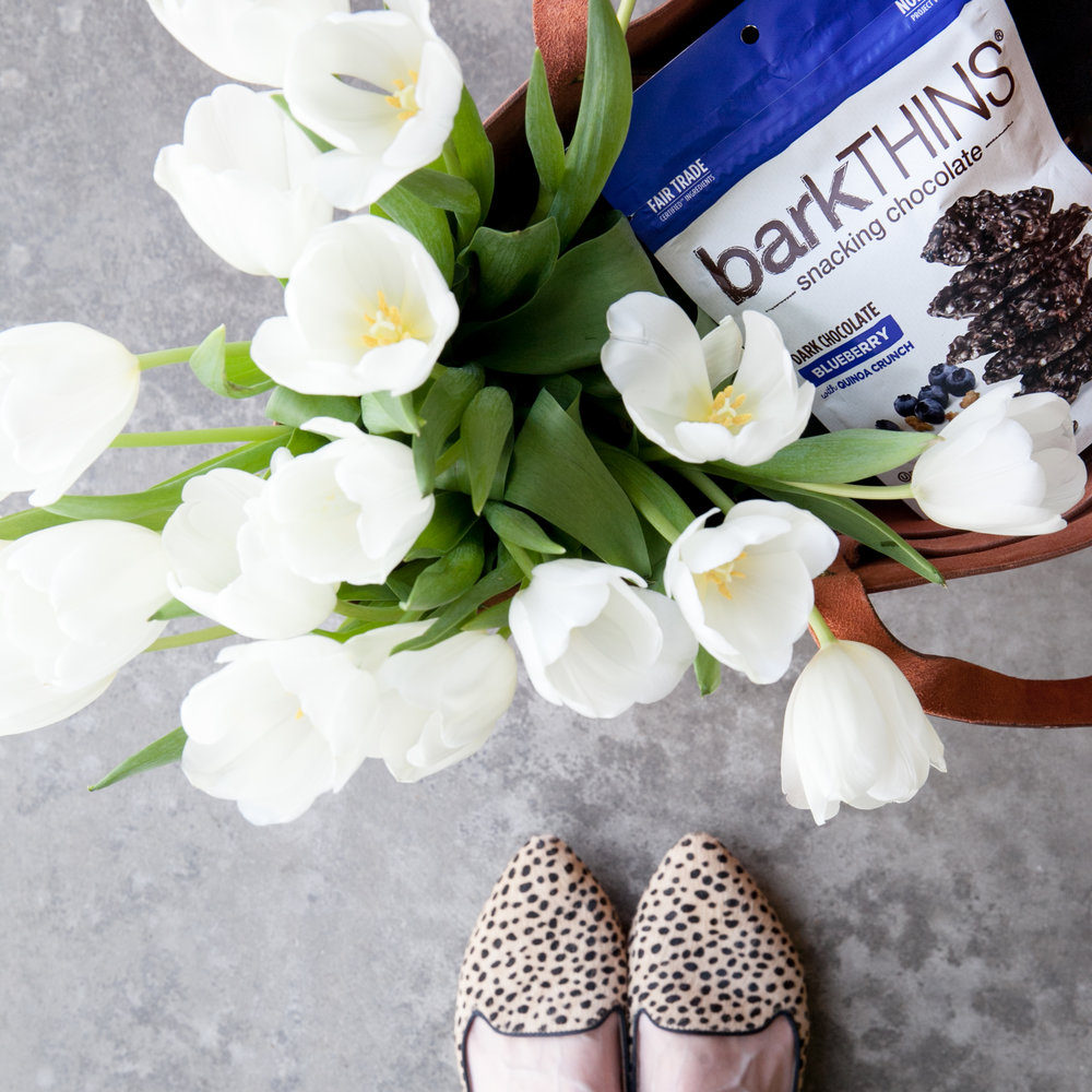 LisaDiederichPhotography_barkTHINS_March-25.jpg