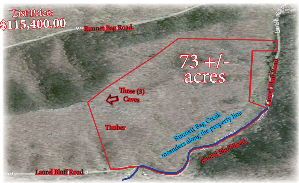 Hicks 73 acres Aerial.jpg