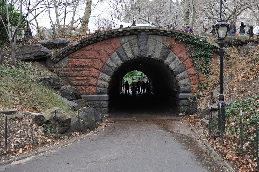 Olmstead's masterpiece, central park