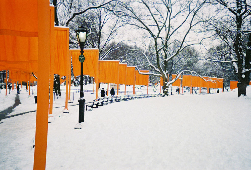 """the Gates"" in Central park"