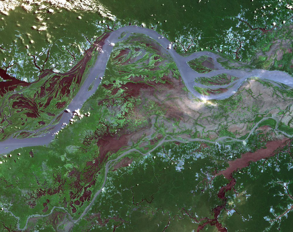 Satellite image of the amazon. Voran/shutterstock