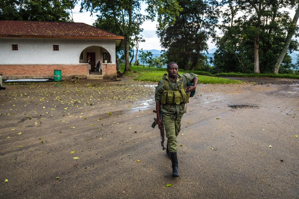 An armed ranger in Virunga National Park, DRC. photo:LMspencer/shutterstock