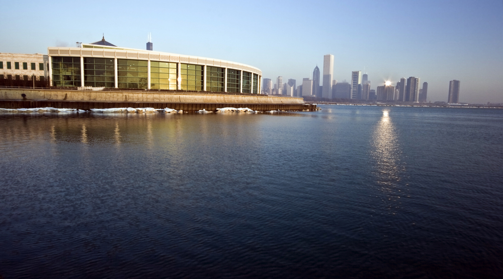 The Shedd Aquarium is among the foundation's grantees. photo: Henryk Sadura/shutterstock