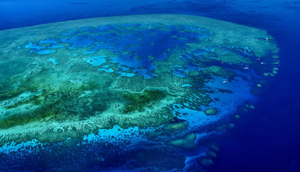 Great Barrier Reef. photo:ProDesign studio/shutterstock