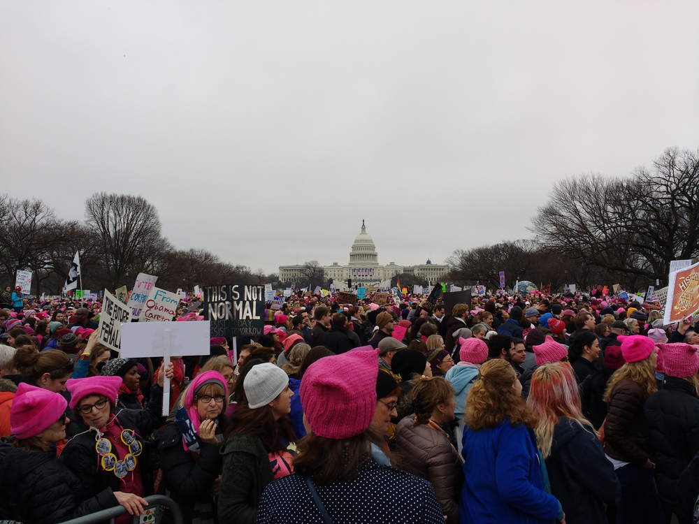 The women's march on Washington, January 21, 2017. Erin Alexis Randolph/shutterstock