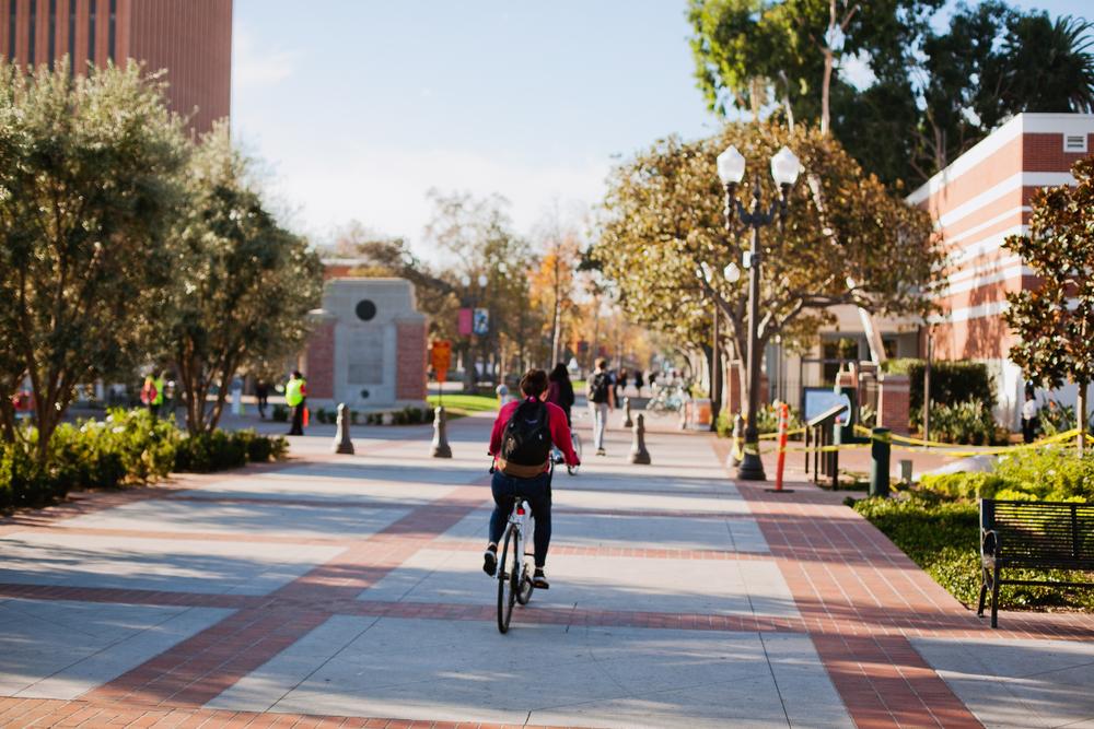 UCLA. Photo: Ganna Tokolova/shutterstock
