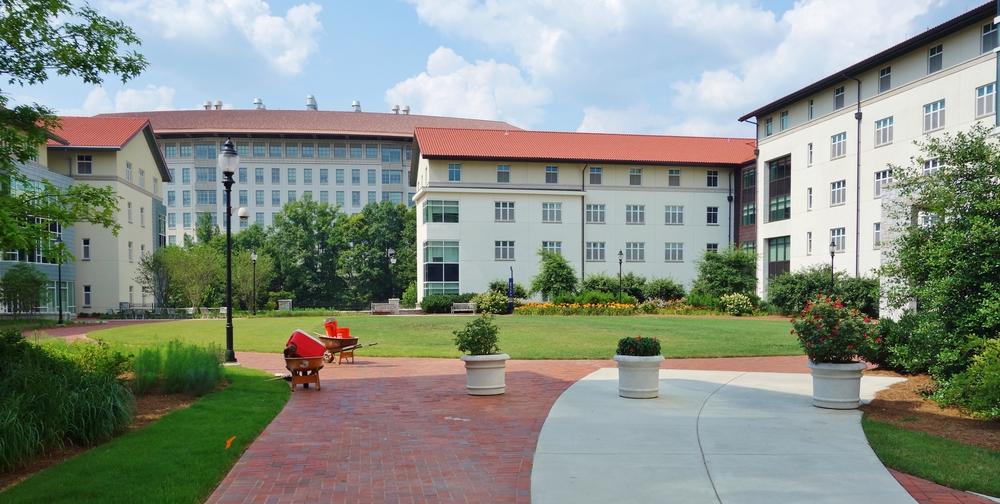 emory university. EQRoy/shutterstock