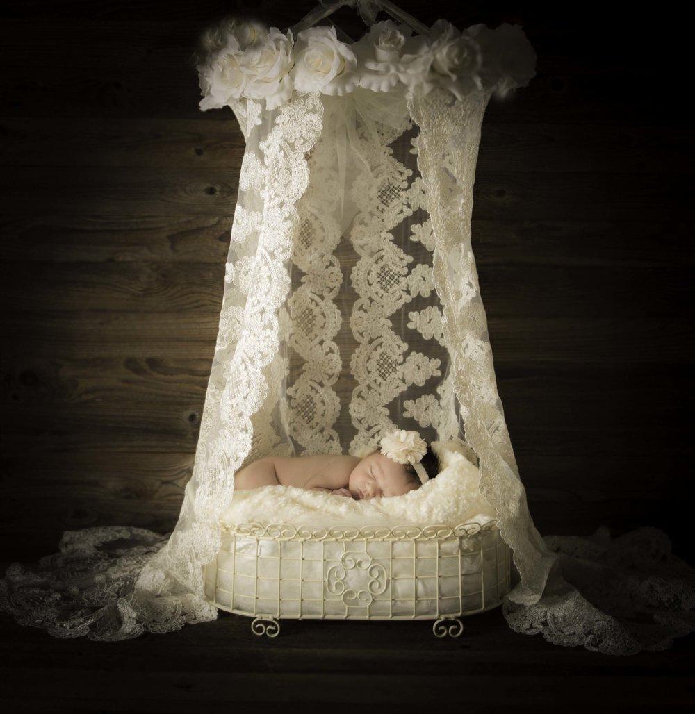 DSC_2166-1.tif veronica victorian lace.jpg