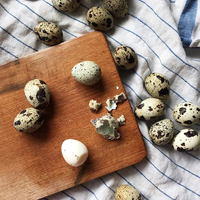 I never get over how cute little quail eggs are. This batch means yakitoris tomorrow by @peppersthroughasia who is mastering Japanese specialty dishes. We have great memories from our time there but at least don't have to miss all the flavors! . . . . #japanesecuisine #frommykitchen #yakitoris #washyoku #japan #flatlay #foodstagram #quaileggs