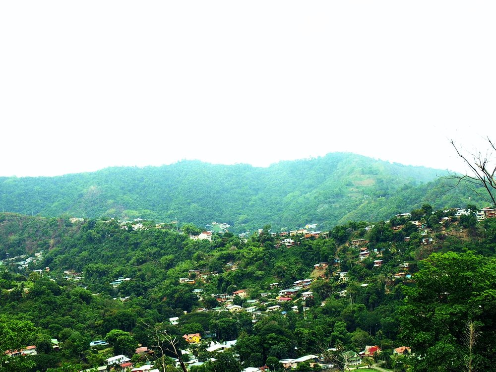 Mountain Tobago.jpg