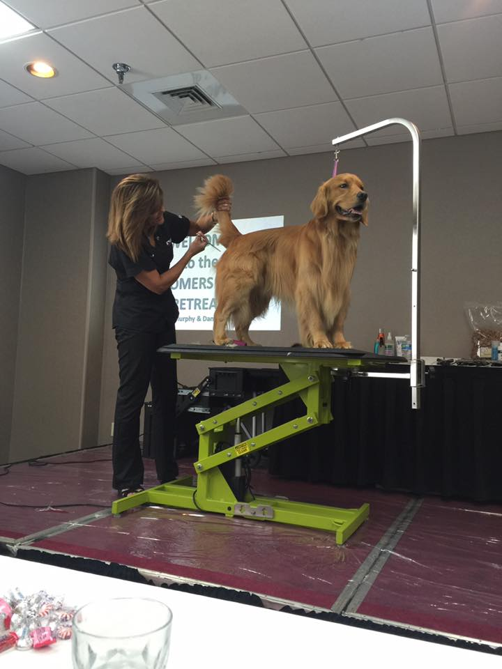 "Jodi Murphy ""Dog Grooming Simplified"" Seminar Series"